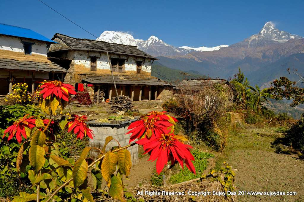 Annapurna Foothills Trek December 23rd to 30th 2017