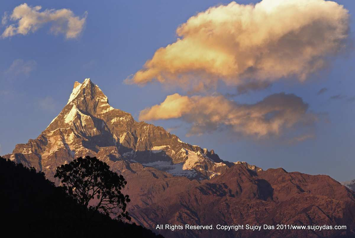 Machapuchare at sunset from Pothana on the Annapurna Base camp trek ,